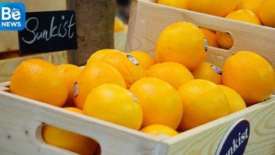 アメリカのオレンジはベトナムへ正式に輸入しています 2