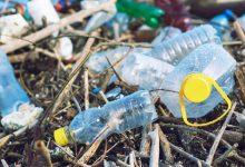 ベトナムは観光地でプラスチックゴミゴミを無しに目指しています